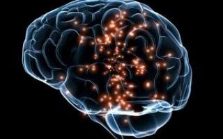 Диагностика МРТ и ЭЭГ при эпилепсии