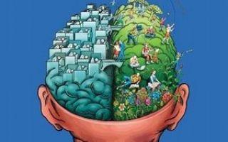 Вегетативная дисфункция и причины ее возникновения