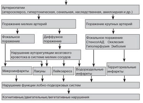Патогенез дисциркуляторной энцефалопатии