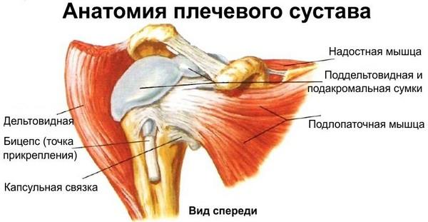 Защемило нерв в плече