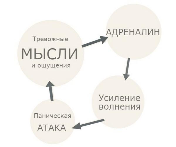 круг панической атаки
