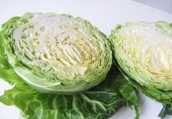 листя белокочанной капусты