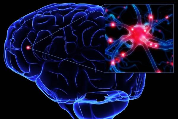 Симптоматическая эпилепсия что это такое