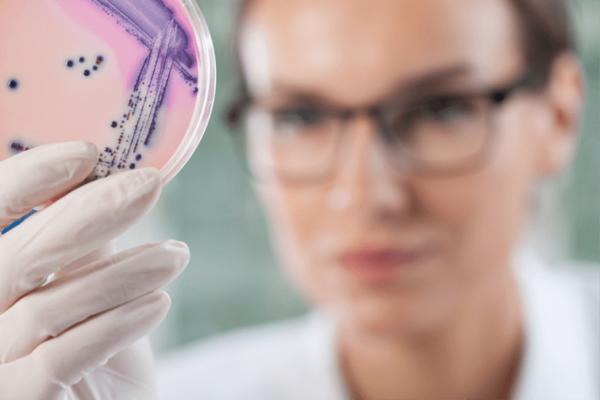 Бактериологические исседования