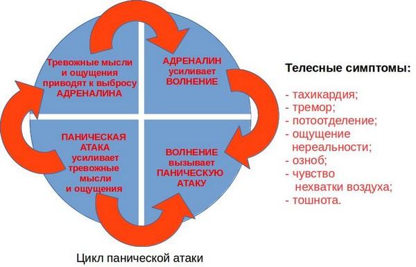 цикл ПА