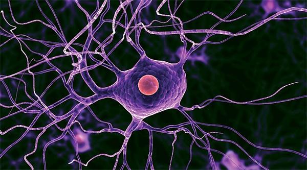 гибель нейрона