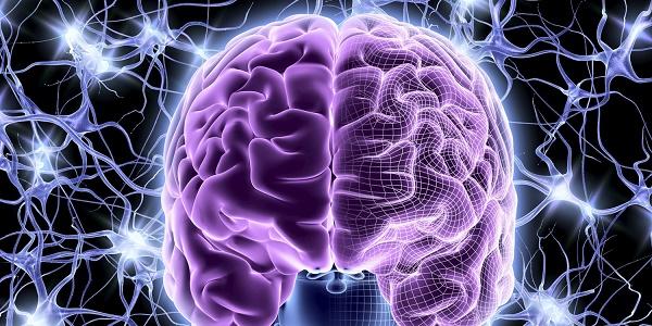 Органическое поражение головного мозга лечение народными средствами thumbnail